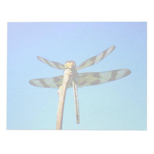 Libreta encaramada libélula bloc de notas
