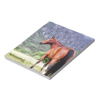 Libreta, equestrian, caballo, blocs