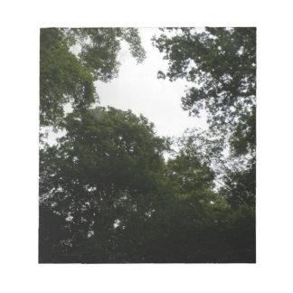 Libreta espeluznante del bosque blocs de notas