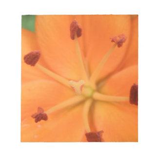 Libreta floral del lirio anaranjado bloc