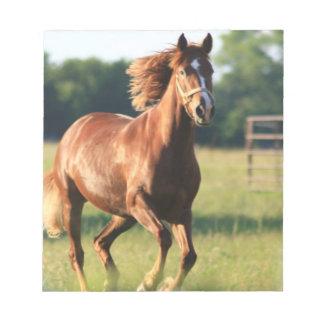 Libreta galopante del caballo de la castaña bloc de notas