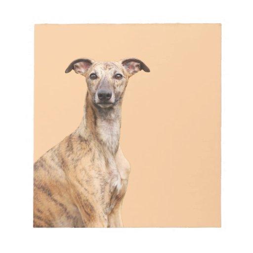 Libreta hermosa de la foto del perro de Whippet, r Blocs De Notas
