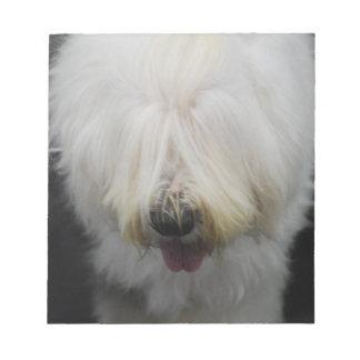 Libreta inglesa vieja linda del perro pastor blocs de papel