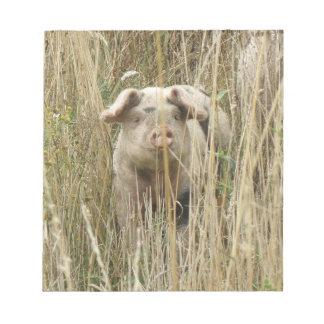Libreta manchada linda del cerdo bloc