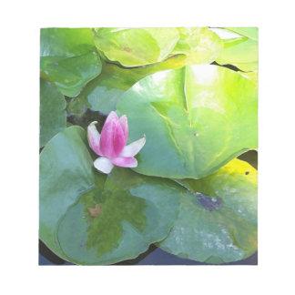 Libreta rosada del lirio de agua blocs de notas