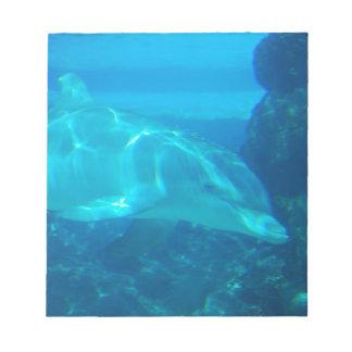 Libreta subacuática del delfín blocs
