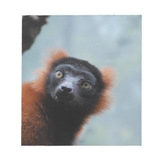 Libreta superada rojo del Lemur Blocs De Notas