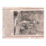 libro de la gramática postal
