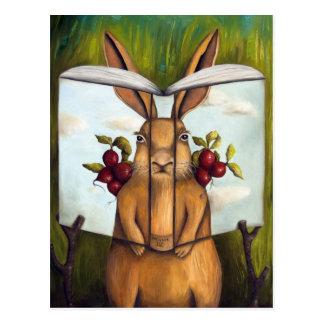 Libro de la historia del conejo de los secretos 4- tarjetas postales