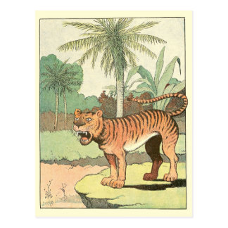 Libro de la historia del tigre postales