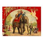 Libro del rojo del elefante postal