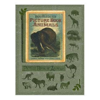 Libro ilustrado de la postal de los animales
