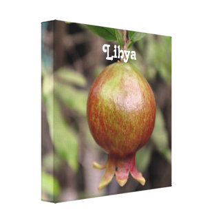 Libyan Pomegranate Gallery Wrapped Canvas