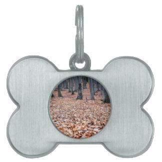 Licencia y árboles placa mascota