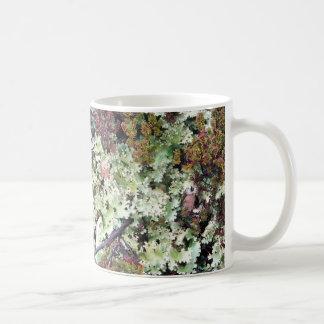 Lichen, Ainsworth Bay, Tierra del Fuego, Chile Coffee Mug