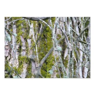 Lichen, Bark, and Branches Card