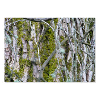 Lichen, Bark, and Branches Large Business Card