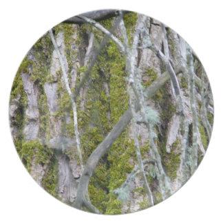 Lichen, Bark, and Branches Melamine Plate