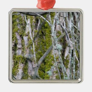Lichen, Bark, and Branches Metal Ornament