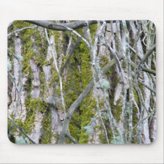 Lichen, Bark, and Branches Mousepads