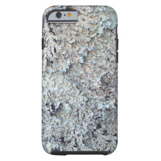 Lichen growing in a small stand of trees tough iPhone 6 case