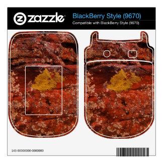 Lichen in the Desert BlackBerry Skins