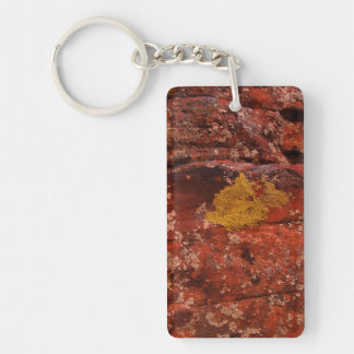 Lichen in the Desert Keychain