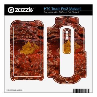 Lichen in the Desert HTC Touch Pro2 Skins