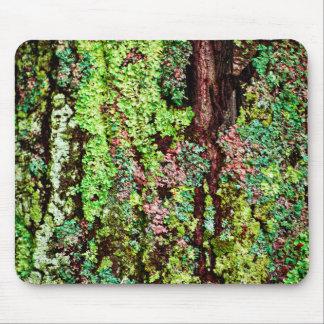 Lichen Mouse Pads