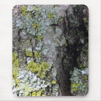 lichen on bark 2 mouse pad