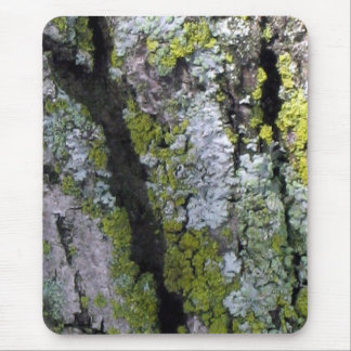 lichen on bark mouse pad