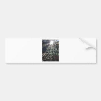 Lichen Rays Bumper Sticker