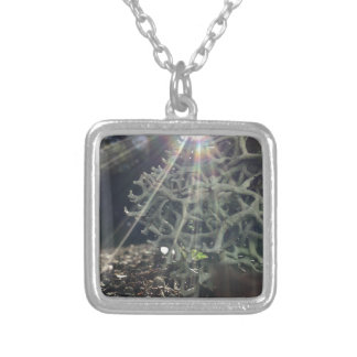 Lichen Rays Silver Plated Necklace
