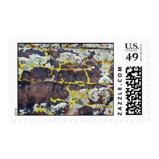 Lichens #3 stamp