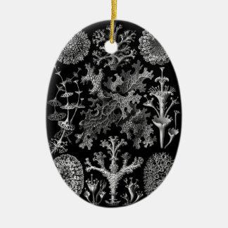 Lichens in Black and White (Lichenes) Ceramic Ornament