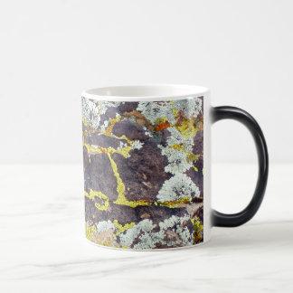 Lichens On Rock No. 3 11 Oz Magic Heat Color-Changing Coffee Mug