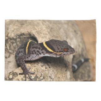 Lichtenfelder's gecko pillowcase