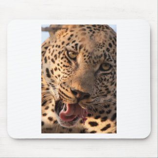 lick mouse pad