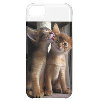 Licked! iPhone 5C Cases