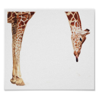 """Licker"" Giraffe Wildlife Animal Watercolor Poster"