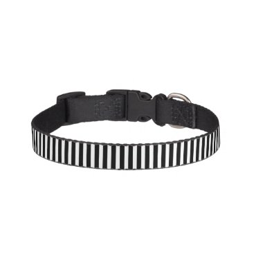 Beach Themed Licorice Black and White Cabana Stripes Pet Collar