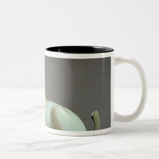 Lid of an unguent jar in the form of an ibex Two-Tone coffee mug