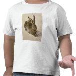 Liebres, 1502 camiseta