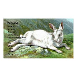 Liebres alpinas plantillas de tarjetas personales