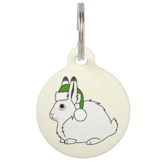 Liebres árticas blancas con el gorra verde de placas para mascotas