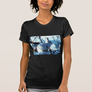 Liebres árticas camisetas