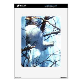 Liebres árticas calcomanías para el iPad