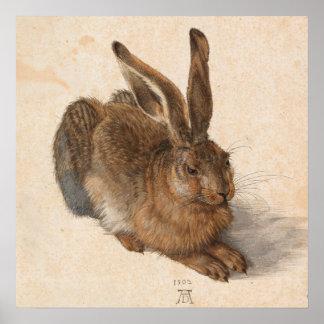 Liebres el   Albrecht Dürer Póster