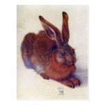 Liebres jovenes de Albrecht Durer, arte renacentis Tarjeta Postal