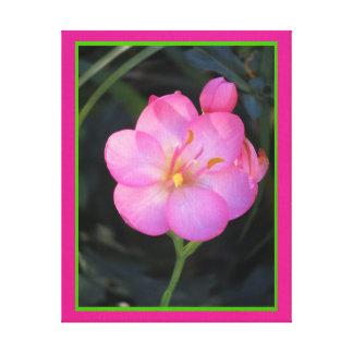 Lienzo Lámina - Flor Rosa del en de Arte Impresión En Lienzo Estirada